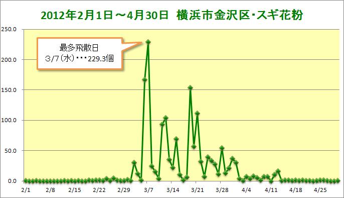 20120201-0430kanazawa-sugi.jpg