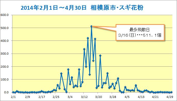 2014sagamihara-sugi.jpg